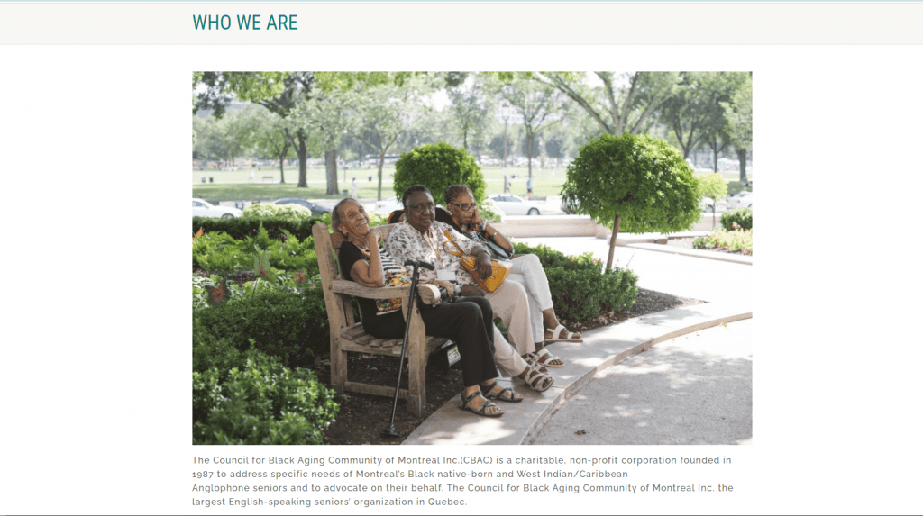 Council for Black Aging Community website screen capture